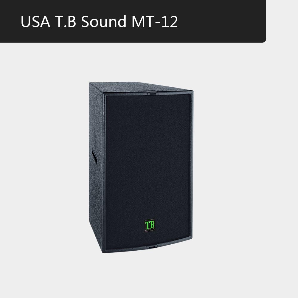 高端商务会所、夜总会、高端量贩、KTV多功能厅美国TB专业音箱MT-12